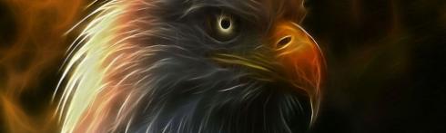 EagleYHWH