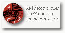 redmoonthunderbird2
